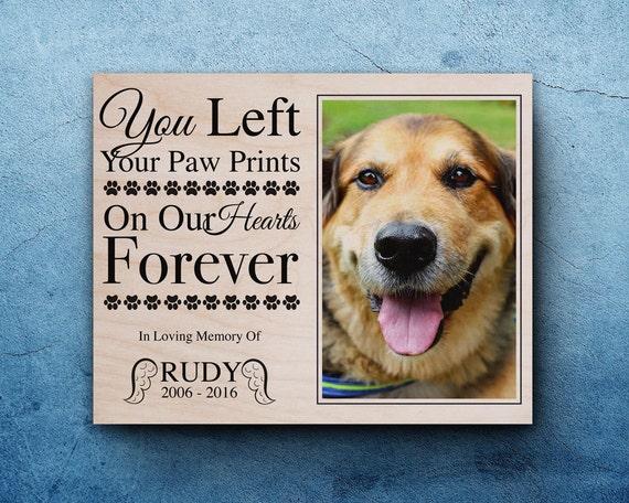 Pet Photo Frames - Frame Design & Reviews ✓