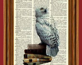 Hedwig Owl Upcycled Dictionary Art Print Poster
