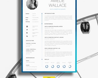 professional cv templates resume templates by introduice professional resume template - Professional Cv Template