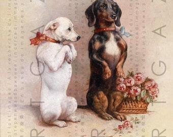 Adorable Chihuahua & Dachshund Dogs. Begging Dogs Vintage Illustration. Digital Dog Download. Dog Digital Print.