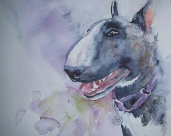 Bull Terrier custom watercolour painting