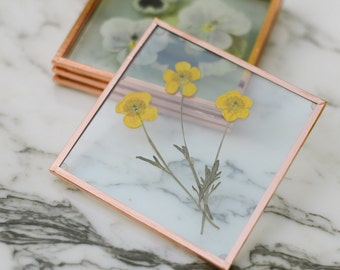 Set of 4 Pressed Flower Coasters, Spring Garden (glass and copper)