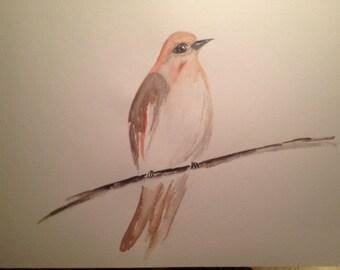 Original Watercolour - little bird