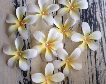 50 x Frangipani Flowers Craft Pack