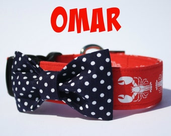 Collar for dog with loop - Omar