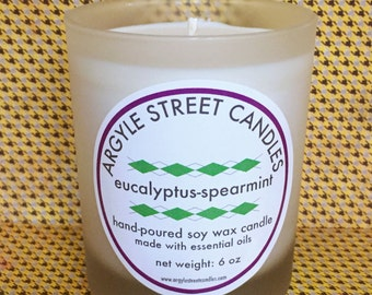 Soy Candle Essential Oil Eucalyptus-Spearmint Frosted Glass Container Candle Handmade