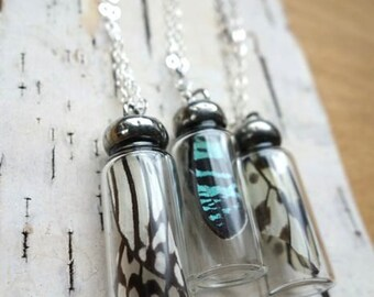 Butterfly Study- black and white butterfly wing in a bottle necklace, Real Wing Jewelry