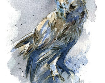 Eastern Screech Owl I watercolor art nature print in multiple sizes