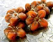 Moroccan Spice (6) -Czech Glass Star Flowers 14x13mm