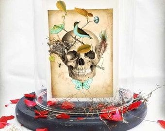 Halloween skull, day of the dead card, gothic style with birds nest, woodland, nature greeting