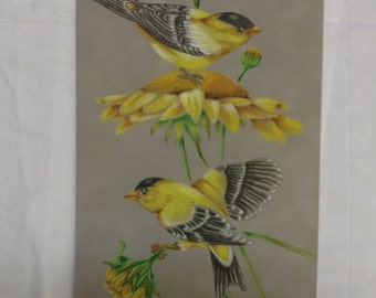 Gold Finch & Sunflowers on Suede Board Colored Pencil