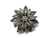 Edelweiss Flower Brooch - 800 Silver Filigree