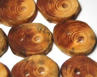 Handmade Wooden Buttons, Natural Wood Buttons, Handmade Spruce Tree Branch Wood Buttons, Set of Eight, 1 1/8 Inch