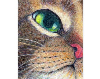 cat art print - Cat Looking Up- tabby cat drawing pet portrait, cat lover's gift, realistic artwork, nursery room decor