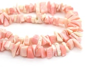 Shell Chip Beads, 15 inch Strand,   Natural Shell,  Pink Shell Beads, Shell -B250