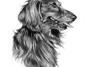 Pet Lover Gift Idea Dog Sketch Portrait 5x7 Final Payment