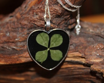 Real Four Leaf Clover Heart Pendant Charm Necklace with sterling silver chain for Get Well Good Luck Brides