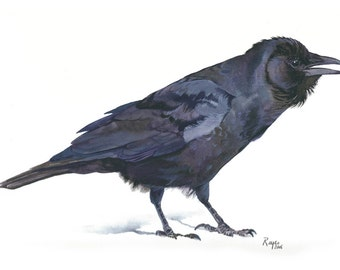 ORIGINAL Watercolor Bird Painting / FIsh Crow
