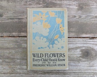 Vintage 1909 Wild Flowers Every Child Should Know Book  / Antique Book