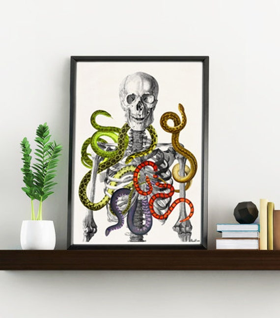 Skeleton with snakes, Wild nature print, Anatomical art print, Art and collectibles- Anatomical skeleton print WSK172