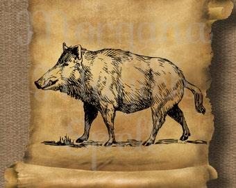 VINTAGE BOAR PIG Hog Royalty Free Clipart Illustration Wiccan Digital Image Download Printable Graphic Clip Art Transfers Prints
