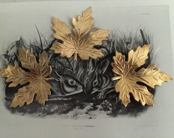 Small Maple Leaf (2pc)