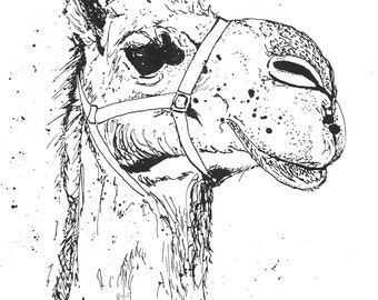 Camel - Ink Sketch, Ink Drawing, Pen and Ink, Black and White, Fine Art Print, Giclee, Original Art, Sahara Camel