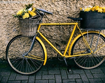 Bicycle Photograph, Dublin Ireland Photo, Yellow Decor, Still Life Photo, Travel Art Print, Bicycle Flower Basket, Yellow Bike Photograph