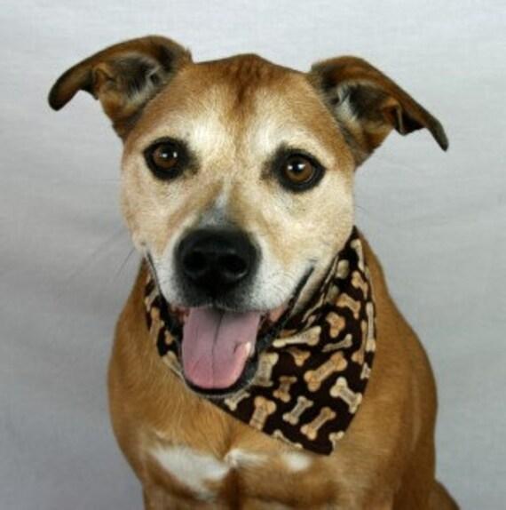 Dog Bone Dog Bandana