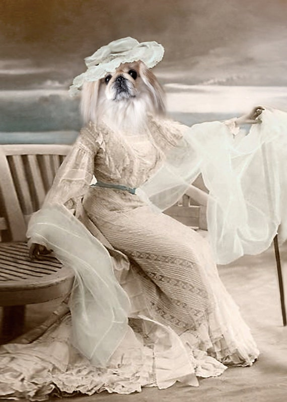 Lady Savannah, Pekingese Print, Anthropomorphic Art, Whimsical Wall Decor, Photo Collage, Unique Art, Digital Collage, Altered Vintage Photo