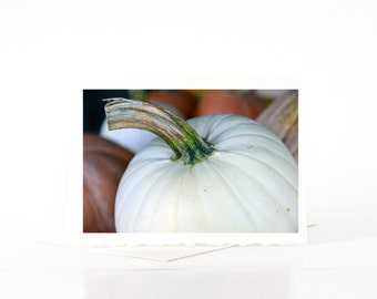 White Pumpkin Cards, Halloween Blank Photo Greeting Cards, Fall Cards, Thanksgiving Cards, Nature Photography Cards, Card Sets