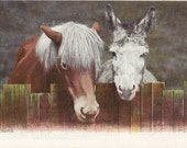 Real Chums - Antique 1900s Tuck's Photochrome Pony and Donkey Postcard