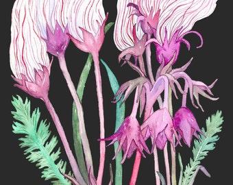 Prairie Smoke, Wildflower, Archival Print of Original Watercolor, you choose size