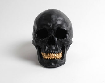 The Jack - Extra Large Matte Black Faux Human Head w/Gold Teeth Halloween Decor - Resin Skeleton Skull - Sugar Skull Like- - Halloween Skull
