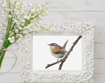 Wren Painting print- bird wildlife art nature brown- print of watercolor painting