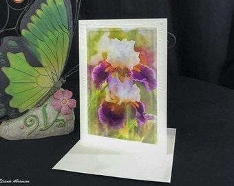 Blank Card Floral Photography Painterly Bearded Iris 5x7 Blank Flower Fine art photography Mini art print