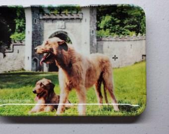 Irish Wolfhound Mini Plastic Tray Plate - Vintage stamped John Hinde Product
