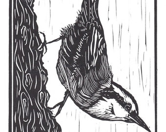Little Nuthatch Linocut Relief Print, Hand Pulled Fine Art, Limited Edition, Printmaking Original