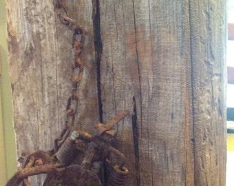Steel jaw trap on barnwood
