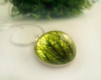 Real Moss Pendant of the Deep Forest: green real moss  lichen pendant resin nature inspired unique forest woodland botanical