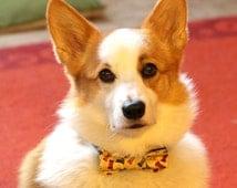Dog bowtie with cute dog bones' print