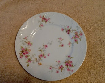 Theodore Haviland Limoges Porcelain Luncheon Plates