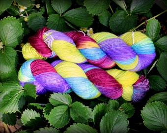 Norther Lights - Hand Painted Superwash Merino Yarn