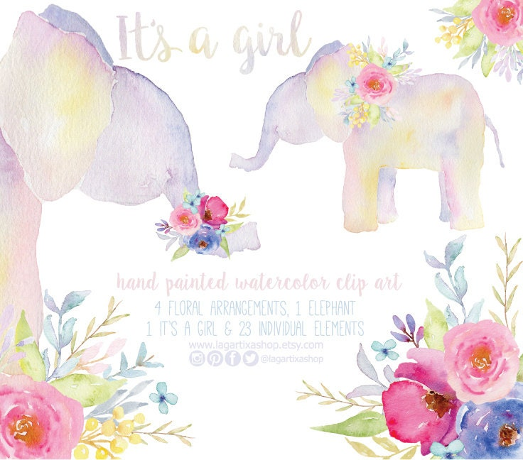 Floral Elephant Watercolor Clipart Png Bouquet