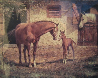 Mare and Foal Custom-Framed 70's Wall Art for Horse Lovers