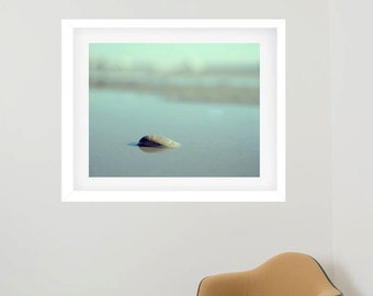 Framed photography, large beach wall art, mint artwork seashell photo, framed art print, framed artwork, nautical living room decor