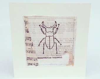 Handmade Collage Illustration Print Stag Beetle Greeting Card