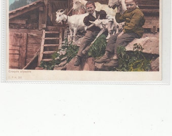 Undivided Antique Postcard,/Croquis Alpestre/Boys&Mountain Goats/Switzerland/Unused