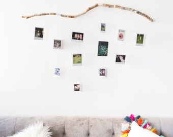 Tree Branch Wall Decor tree branch wall decor photograph hanger with white ombre