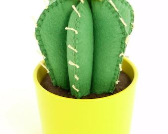 Cactus felt in ceramic pot with yellow flower